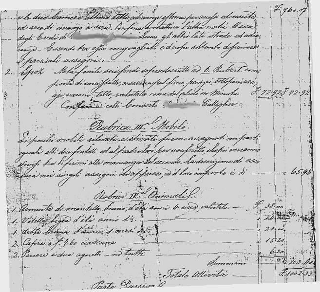 Una divisione patrimoniale di 140 anni fa for Piani casa tetto del fienile